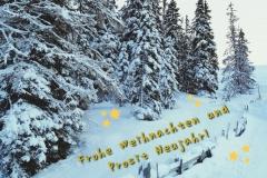 Frohe-Weihnachten-und-Prosit-Neujahr